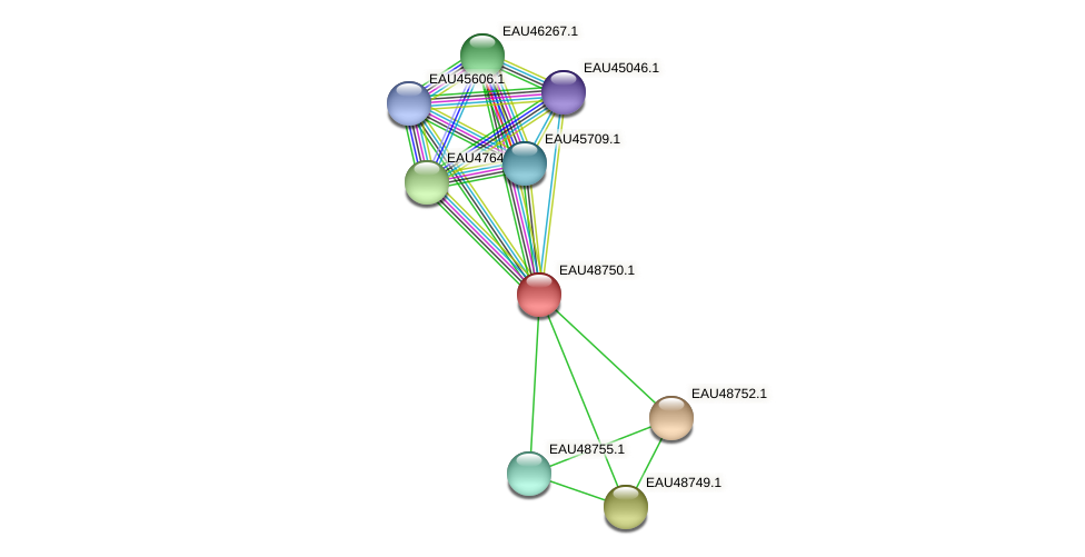 R2601_04218 protein (Pelagibaca bermudensis) - STRING interaction network