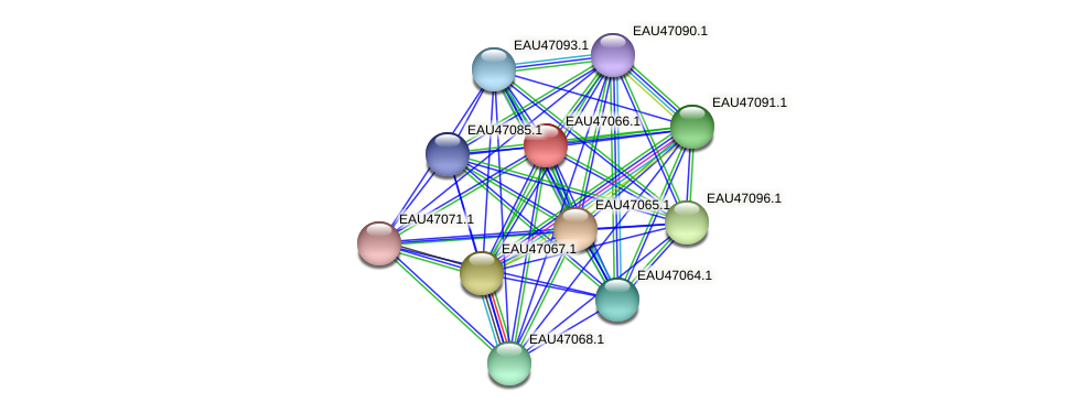 R2601_04843 protein (Pelagibaca bermudensis) - STRING interaction network