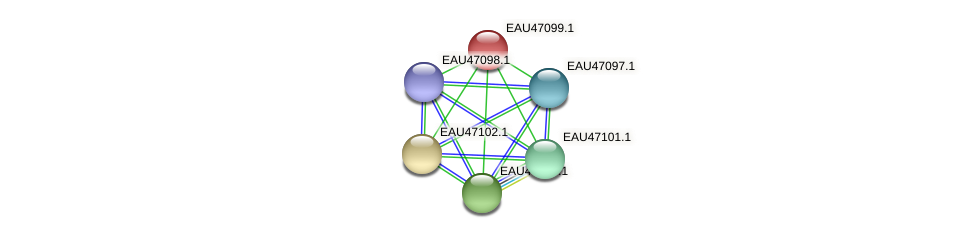 R2601_05008 protein (Pelagibaca bermudensis) - STRING interaction network