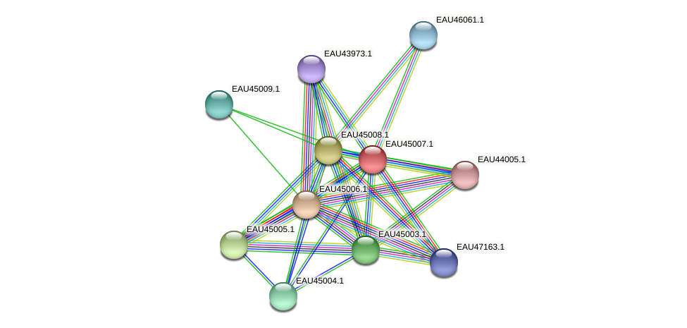 R2601_05283 protein (Pelagibaca bermudensis) - STRING interaction network