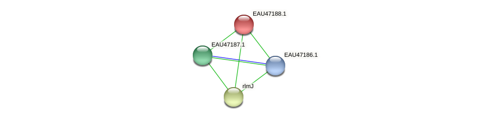 R2601_05678 protein (Pelagibaca bermudensis) - STRING interaction network