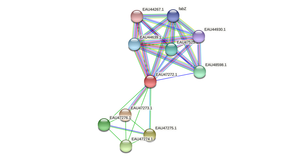 R2601_06098 protein (Pelagibaca bermudensis) - STRING interaction network
