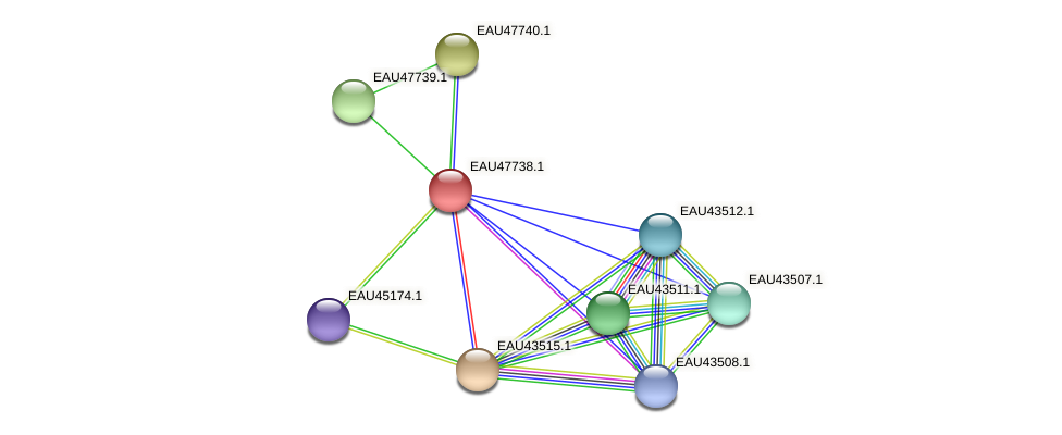 R2601_06498 protein (Pelagibaca bermudensis) - STRING interaction network