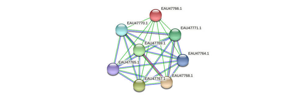 R2601_06638 protein (Pelagibaca bermudensis) - STRING interaction network