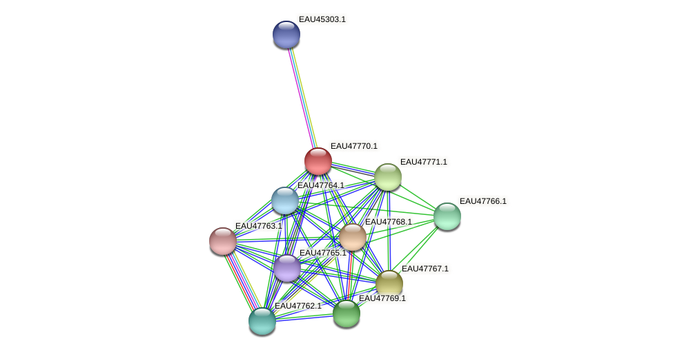 R2601_06658 protein (Pelagibaca bermudensis) - STRING interaction network