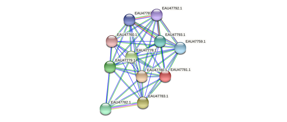 R2601_06713 protein (Pelagibaca bermudensis) - STRING interaction network