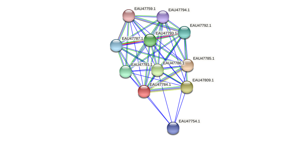 R2601_06728 protein (Pelagibaca bermudensis) - STRING interaction network