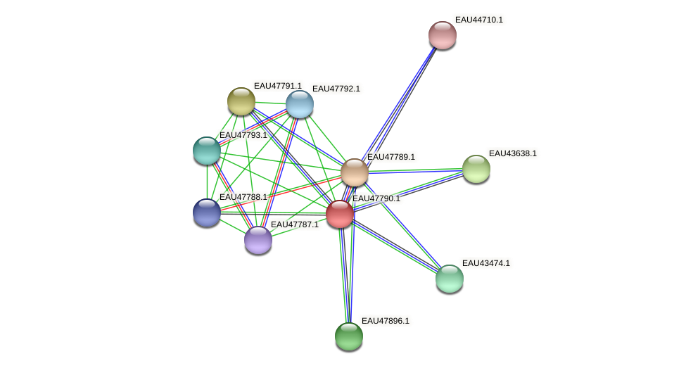 R2601_06758 protein (Pelagibaca bermudensis) - STRING interaction network