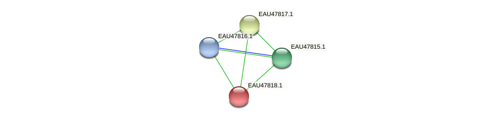 R2601_06898 protein (Pelagibaca bermudensis) - STRING interaction network