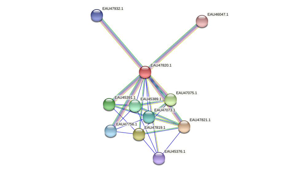 R2601_06908 protein (Pelagibaca bermudensis) - STRING interaction network
