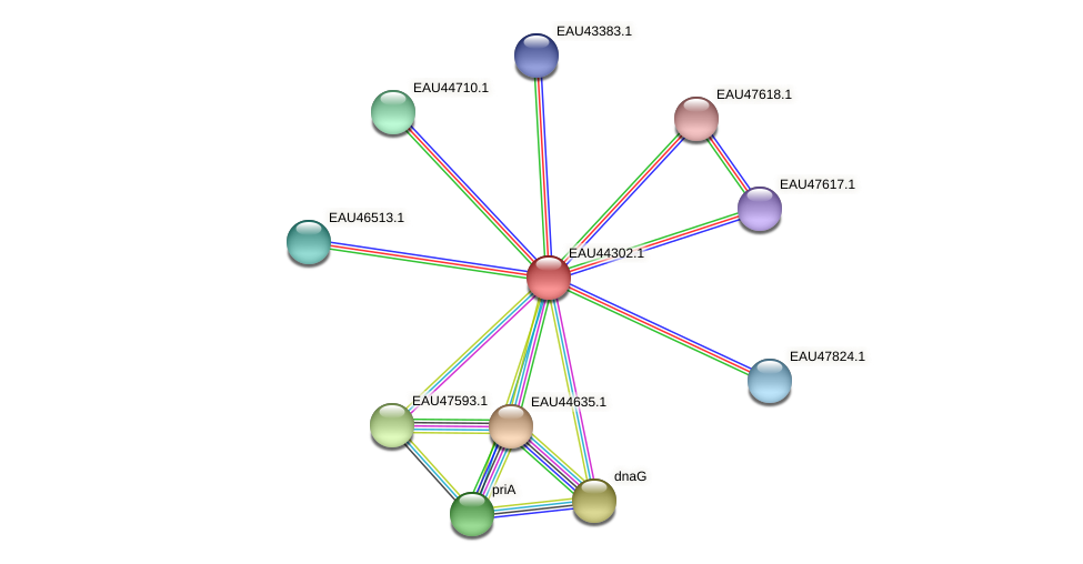 R2601_07278 protein (Pelagibaca bermudensis) - STRING interaction network
