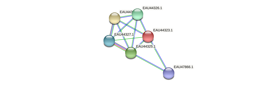 R2601_07383 protein (Pelagibaca bermudensis) - STRING interaction network