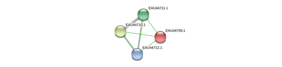 R2601_07583 protein (Pelagibaca bermudensis) - STRING interaction network