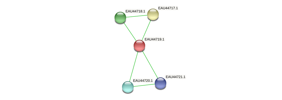 R2601_07633 protein (Pelagibaca bermudensis) - STRING interaction network