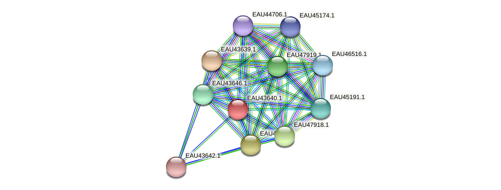 R2601_07951 protein (Pelagibaca bermudensis) - STRING interaction network