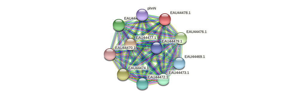 R2601_08096 protein (Pelagibaca bermudensis) - STRING interaction network