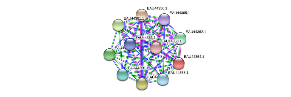 R2601_08401 protein (Pelagibaca bermudensis) - STRING interaction network