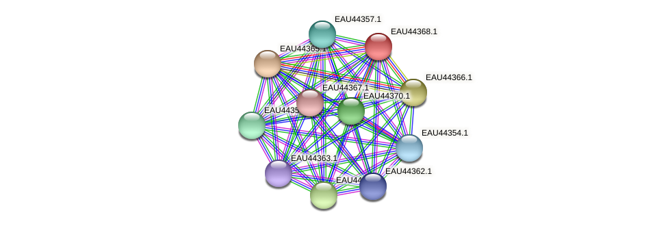 R2601_08471 protein (Pelagibaca bermudensis) - STRING interaction network