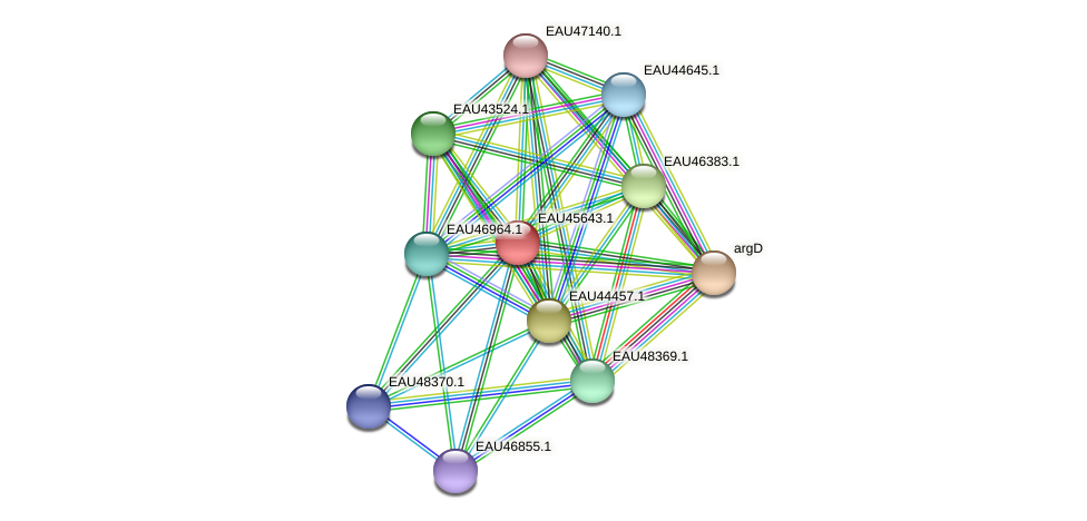 R2601_08848 protein (Pelagibaca bermudensis) - STRING interaction network