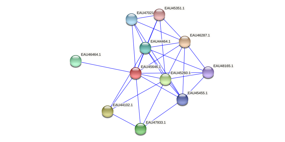 R2601_08863 protein (Pelagibaca bermudensis) - STRING interaction network