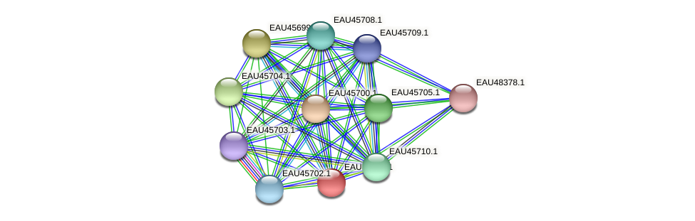 R2601_09138 protein (Pelagibaca bermudensis) - STRING interaction network