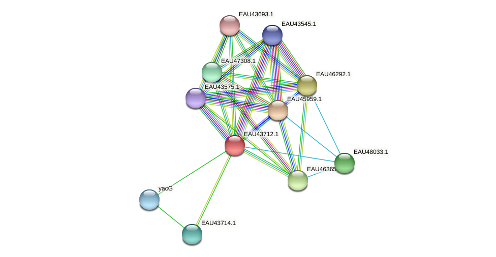 R2601_09310 protein (Pelagibaca bermudensis) - STRING interaction network