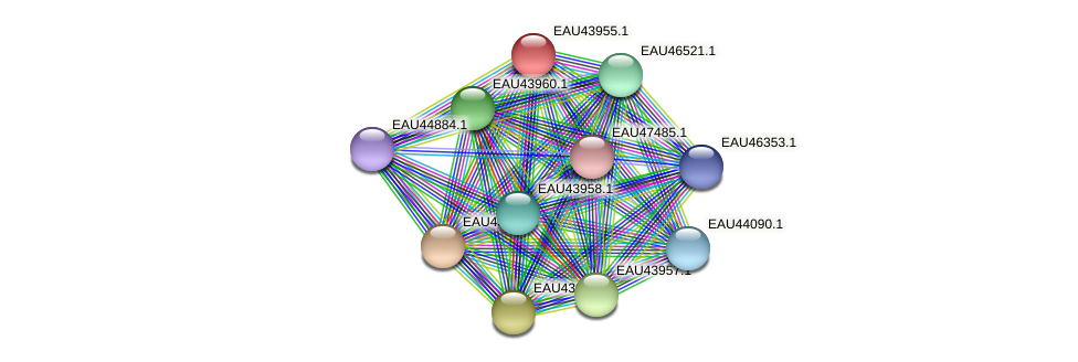 R2601_09410 protein (Pelagibaca bermudensis) - STRING interaction network
