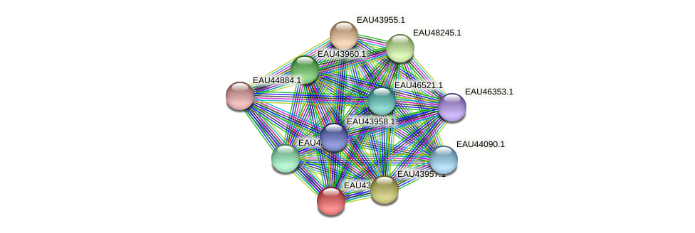 R2601_09415 protein (Pelagibaca bermudensis) - STRING interaction network