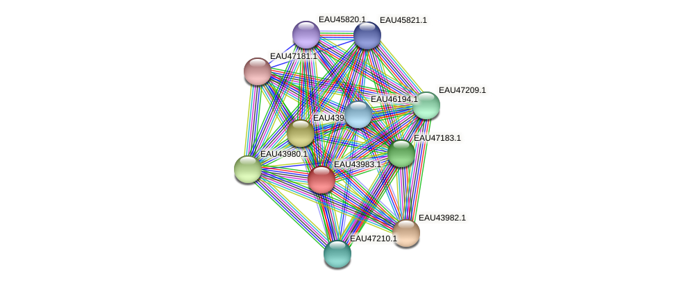 R2601_09552 protein (Pelagibaca bermudensis) - STRING interaction network