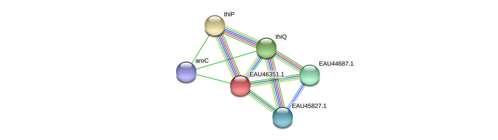 R2601_09857 protein (Pelagibaca bermudensis) - STRING interaction network