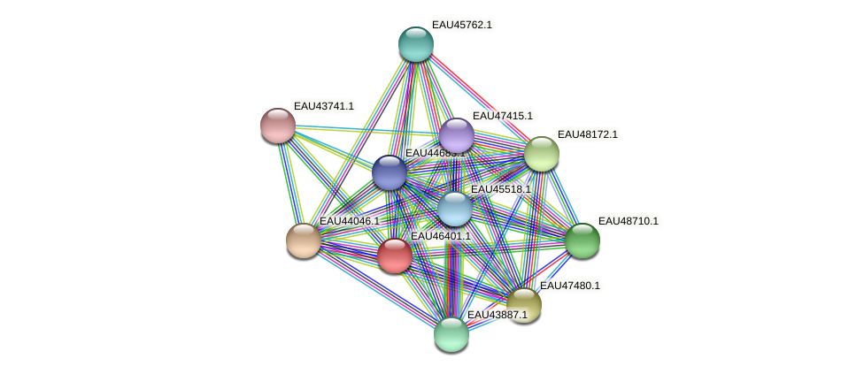 R2601_10107 protein (Pelagibaca bermudensis) - STRING interaction network