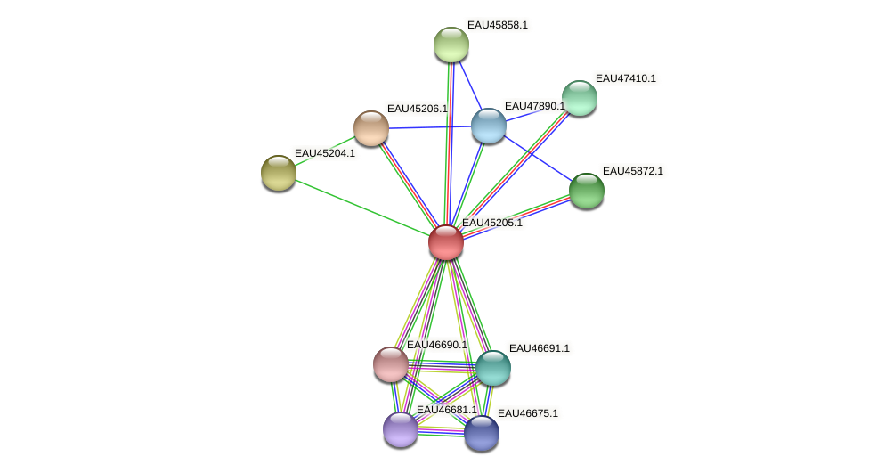 R2601_10259 protein (Pelagibaca bermudensis) - STRING interaction network