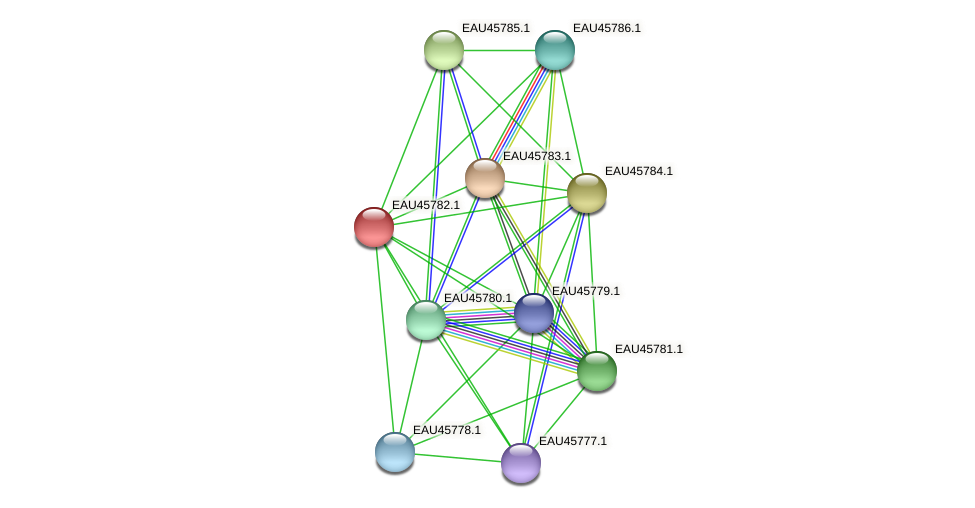 R2601_10774 protein (Pelagibaca bermudensis) - STRING interaction network