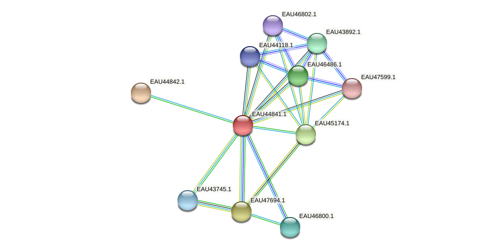 R2601_10914 protein (Pelagibaca bermudensis) - STRING interaction network