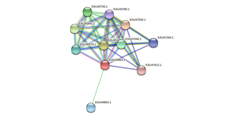 R2601_11024 protein (Pelagibaca bermudensis) - STRING interaction network