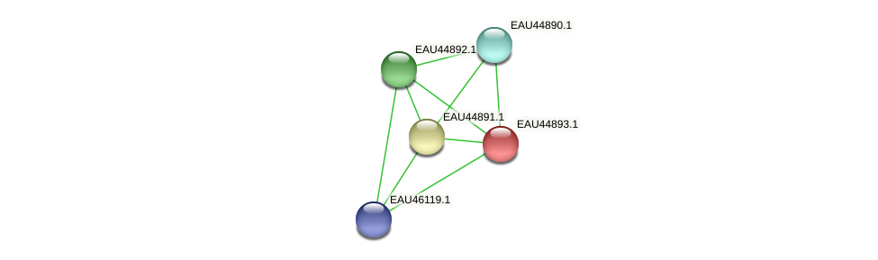 R2601_11174 protein (Pelagibaca bermudensis) - STRING interaction network