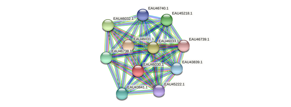 R2601_11184 protein (Pelagibaca bermudensis) - STRING interaction network
