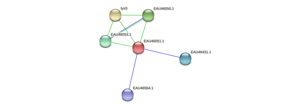 R2601_11289 protein (Pelagibaca bermudensis) - STRING interaction network