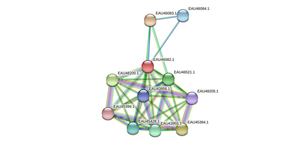 R2601_11444 protein (Pelagibaca bermudensis) - STRING interaction network