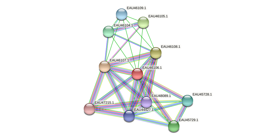 R2601_11564 protein (Pelagibaca bermudensis) - STRING interaction network