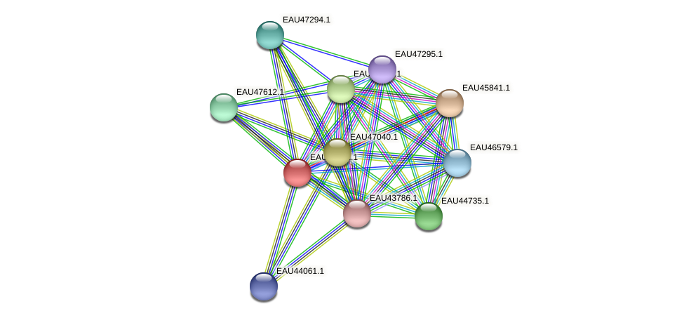 R2601_11699 protein (Pelagibaca bermudensis) - STRING interaction network