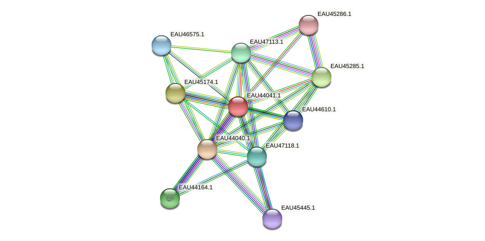 R2601_11836 protein (Pelagibaca bermudensis) - STRING interaction network