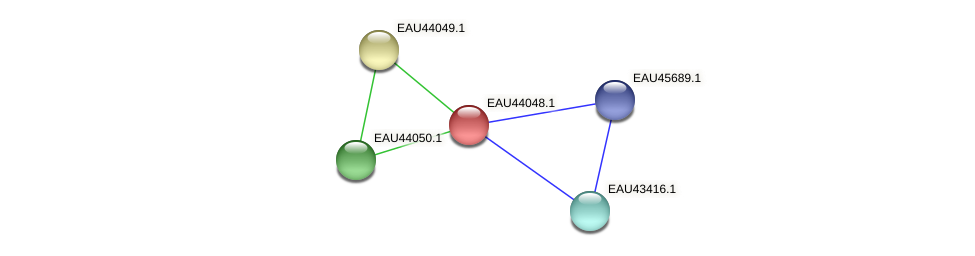 R2601_11871 protein (Pelagibaca bermudensis) - STRING interaction network