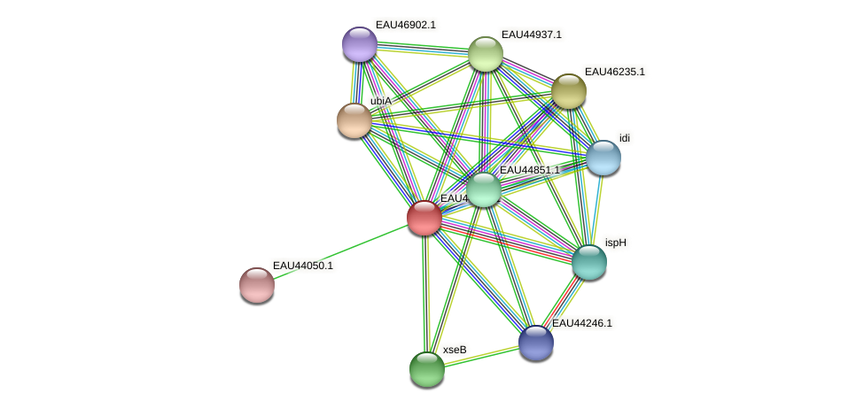 R2601_11886 protein (Pelagibaca bermudensis) - STRING interaction network