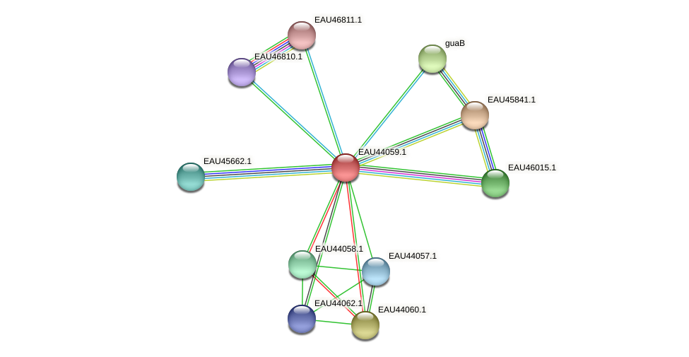 R2601_11926 protein (Pelagibaca bermudensis) - STRING interaction network
