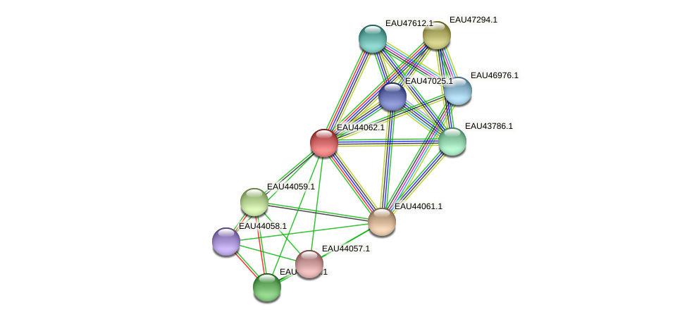 R2601_11941 protein (Pelagibaca bermudensis) - STRING interaction network