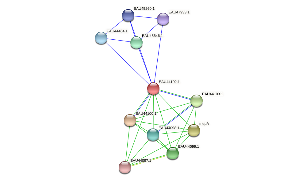 R2601_12106 protein (Pelagibaca bermudensis) - STRING interaction network