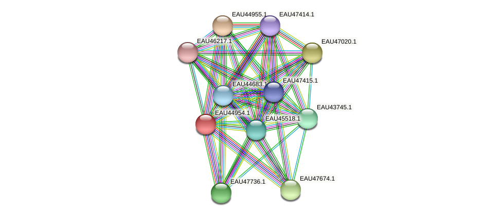 R2601_12303 protein (Pelagibaca bermudensis) - STRING interaction network
