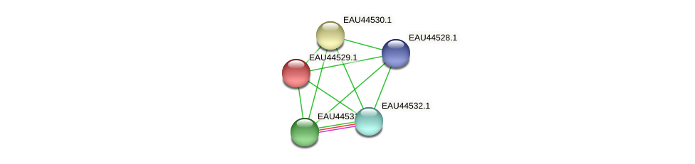 R2601_12665 protein (Pelagibaca bermudensis) - STRING interaction network