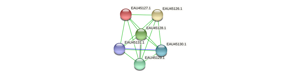 R2601_12755 protein (Pelagibaca bermudensis) - STRING interaction network